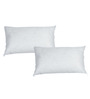 R Home White Polyester 20 x 12 Inch Pillow Inserts - Set of 2