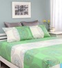 Raymond Home Green Cotton Queen Silverleaf Bed sheet with 2 Pillow Covers
