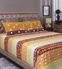 Raymond Home Multicolour 100% Cotton Queen Size Bedsheet - Set of 3