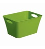 Rotho Plastic Green 11 L Box