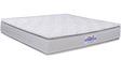 Sentinel 8 Inch Thick Queen-Size Both-Side Pillow Top Mattress by Springtek