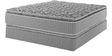 Serene PT 8 Inch Thickness Single-Size Bonnel Spring Mattress by Sleep Innovation