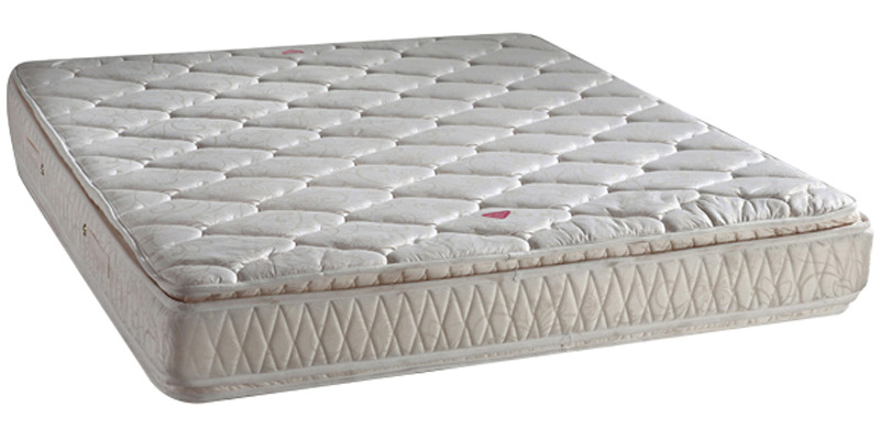Serene PT 6 Inch Thickness Single-Size Bonnel Spring Mattress by Sleep Innovation