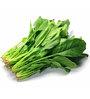 Seedlings India Spinach Veg Seeds
