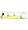Hosley Sweet Pea Jasmine Scented Glass Candles - Set of 3