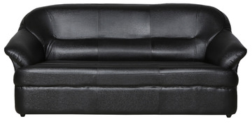 Shine Three Seater Sofa In Black Colour By Parin