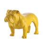 Shaze Yellow Resin Angus Bull Dog Showpiece