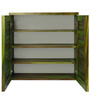 Shoe Rack in Olive Green Colour by Furnicheer