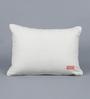 Solaj Multicolour Cotton 14 x 14 Inch Sequin Cushion Cover