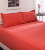 Spaces Red Cotton Queen Bed Sheet - Set of 3