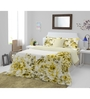 Spaces Yellow & Red Cotton King Size Courtyard Bedsheet - Set of 3