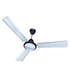 Standard Breezer DT Sweep 1200 Mm Aqua White With Metallic Finish Ceiling Fan