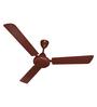 Havells Standard Sailor 900 mm Brown Ceiling Fan