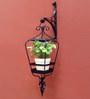 Studio Earthbox Sicily Lantern Black Metal Hanging Planter with White Ceramic Pot