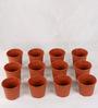 Sunrise 10 cm Brown Colour Planter Pot by Chhajed Garden