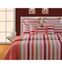 Swayam Magenta Cotton Queen Size Bed sheet - Set of 3