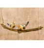 Tailor Birds Peppy Pops  by Chatur Chidiyaa