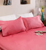 Tezerac Coral Cotton Solid 98 x 88 Inch Bed Sheet (with Pillow Covers)