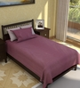 Tezerac Plum Cotton Solid 88 x 59 Inch Bed Sheet (with Pillow Cover)