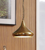The Light Store Brass Metal Pendants