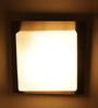 TLS by Kapoor Lampshades Silver Mild Steel & Glass Recessed Light
