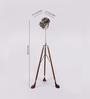 The Light Store Wooden & Brass Tripod Lamp