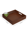 The Mikky Shoppe Station Brown MDF Rajasthani Painting Tray