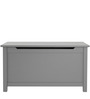 The Toy Box in Grey Colour by Asian Arts