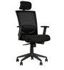 Titan High Back Ergonomic Chair in Black Colour by HomeTown