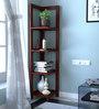 Toledo Display Units in Honey Oak Finish by Woodsworth