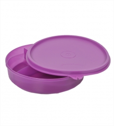 Tupperware Divided Dish For Kids / Lunch Box Specially For Kids