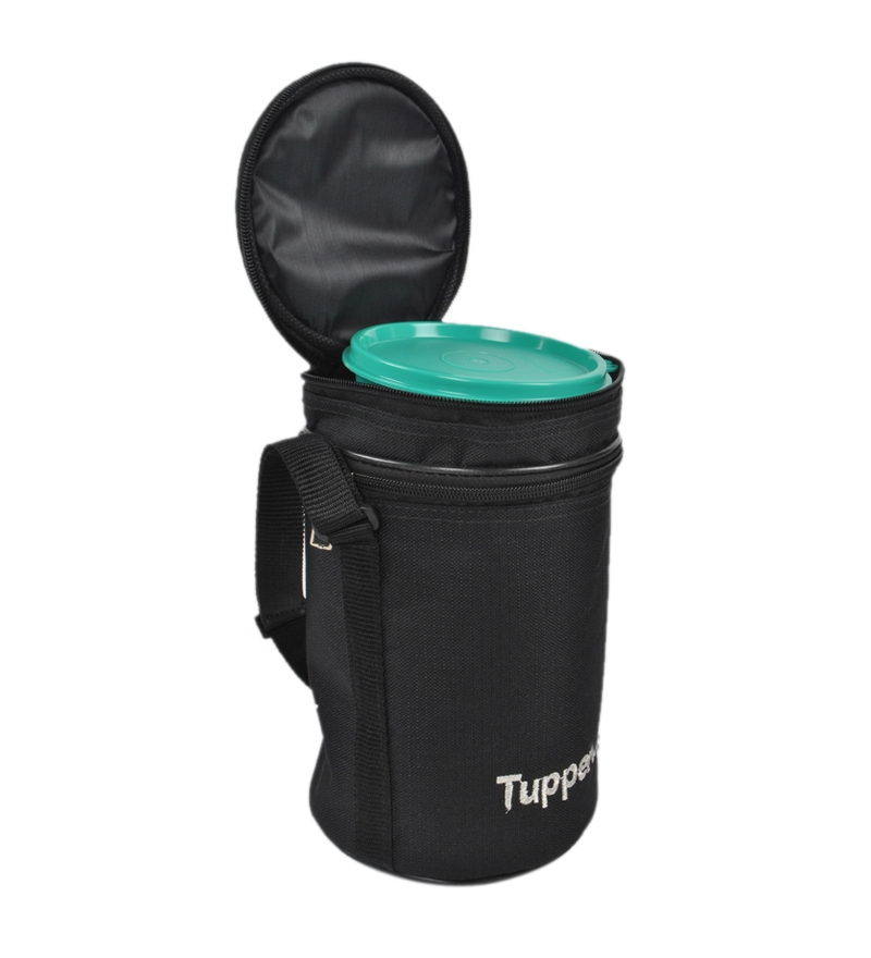 tupperware plastic executive lunch box insulated bag. Black Bedroom Furniture Sets. Home Design Ideas