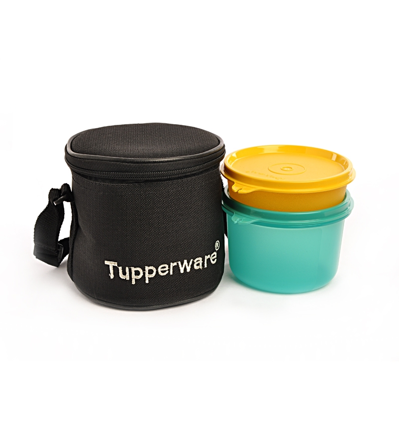Buy Tupperware Small Executive Plastic Lunch Box With