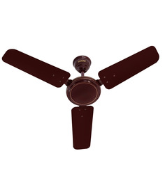 Usha Ace Ex 900mm Brown Ceiling Fan - 35.43 inch