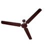 Usha Ace EX Brown Ceiling Fan - 55.11 inch