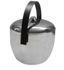 Virgin Craft Stainless Steel Apple Shaped Double wall Ice Bucket