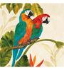 Wall Decor Canvas 24 x 24 Inch Macaw Pair Framed Digital Art Print