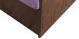 Winchester Sofa Cum Bed in Purple Colour by Auspicious