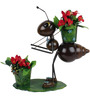 Wonderland Ant with Two Pots