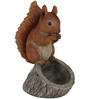 Wonderland Decorative Red Squirrel with Bird Feeder