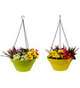 Wonderland Set of 2 : Hanging Railing Planter with Metal Chain in Green & Yellow