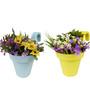 Wonderland Set of 2 : Railing Buckets in Yellow & Blue