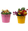 Wonderland Set of Two : 6.5 inch Lace Planter in Pink & Yellow