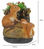 Wonderland - Shoe With Rabbits With Flower ( 1.4 Kg )