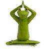 Yoga Frog Figurine by The Yellow Door