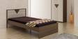 Yuva Single Bed in Accacia Melamine Finish by Spacewood