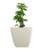 Yuccabe Italia White Planter
