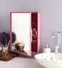 Zahab Cherry Pink Plastic Cabinet with Mirror