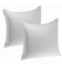 Zikrak Exim White Polyester 20 x 20 Inch Floor Cushion Inserts - Set of 2